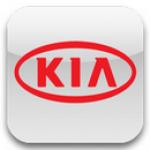 Ворсовые автомобильные 3D коврики для автомобилей Kia