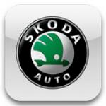 Ворсовые автомобильные 3D коврики для автомобилей Skoda